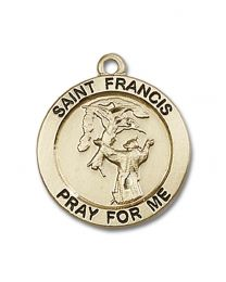 14kt Gold Filled St. Francis Pendant with Gold-Filled Lite Curb Chain