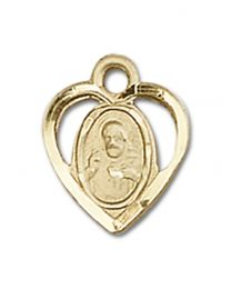14kt Gold Filled Scapular Pendant with Gold Filled Lite Curb Chain